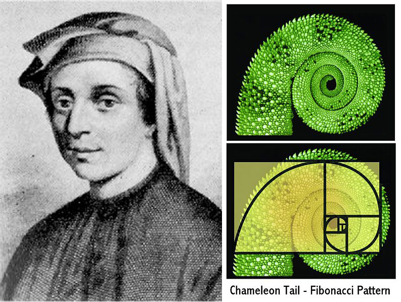 a biography of the early life and education of european mathematician fibonacci Fibonacci - his rabbits and his numbers and kepler no biography or painting is known of him but this firstly with the greeks and then during the european.