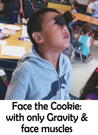 face-the-cookie